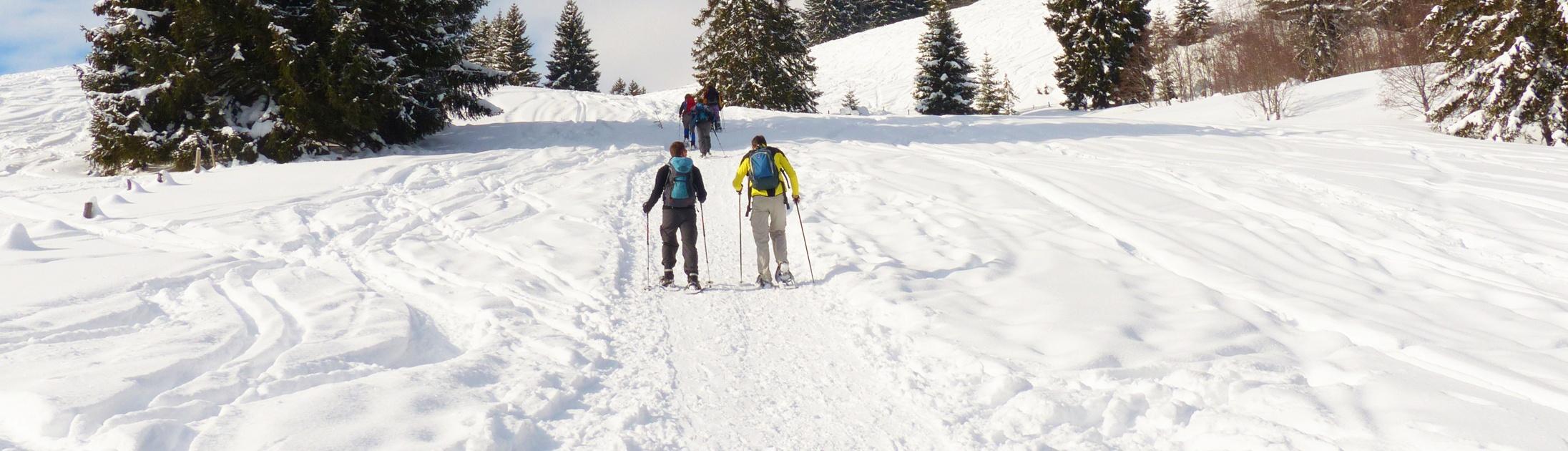 Séjour au ski ou randonnée en raquettes en groupe