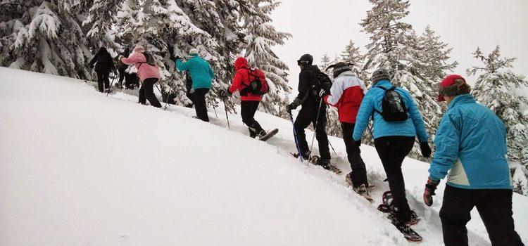 Journée d'hiver dans les Alpes du Léman