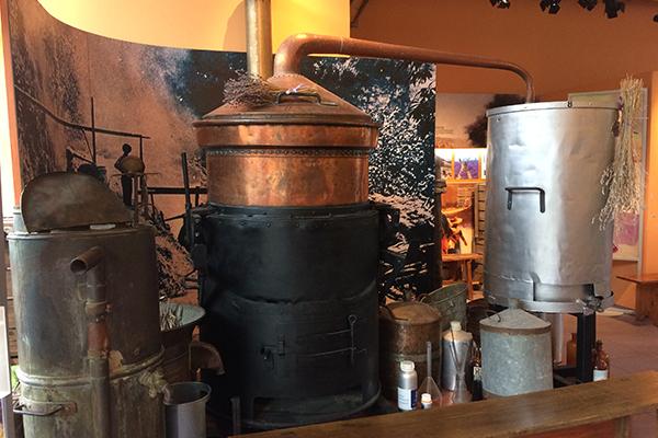 séjours découverte de la distillerie bleu provence avec néaclub